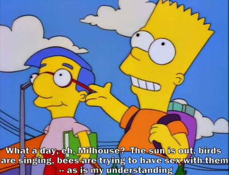 Bart cutting milhoues dick